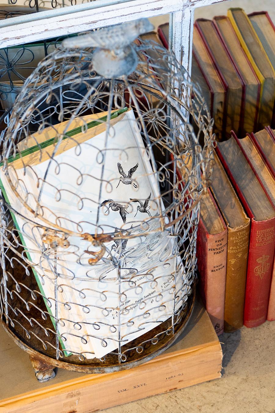 古い鳥かごの中に、鳥のイラストのページを開いて。