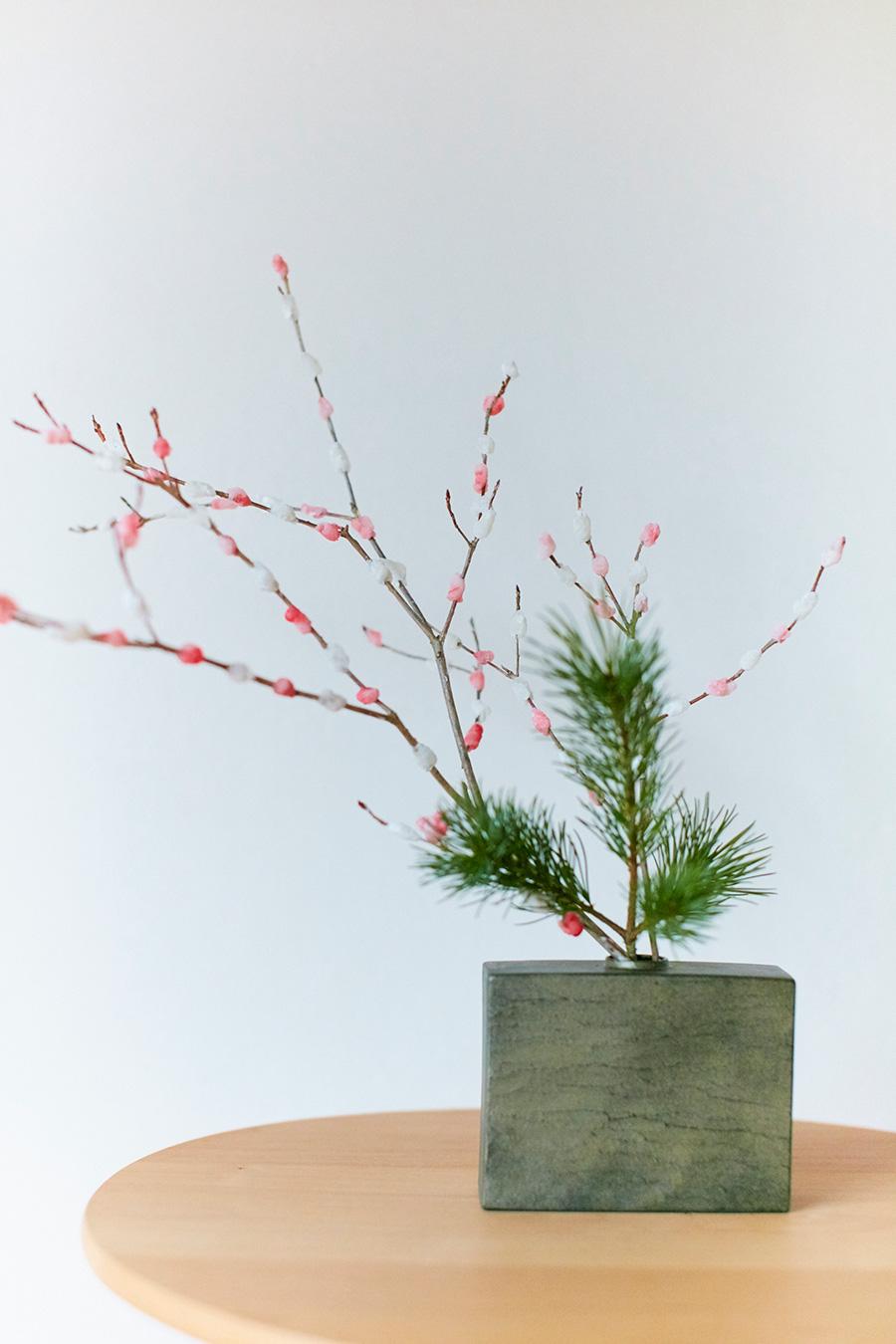 餅花と、ヒメゴヨウマツを活ける。「松は神様をお迎えする樹です。小型のヒメゴヨウマツは小さく生ける時に使いやすい種類です」
