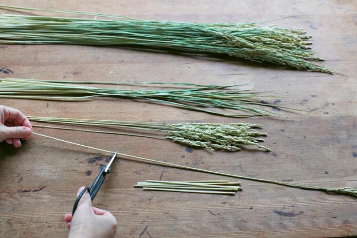 稲穂は節の上で切ると、稲穂と葉を分けることができる。上から、切り分ける前の稲穂(使うのは10本程度)、葉、稲穂。