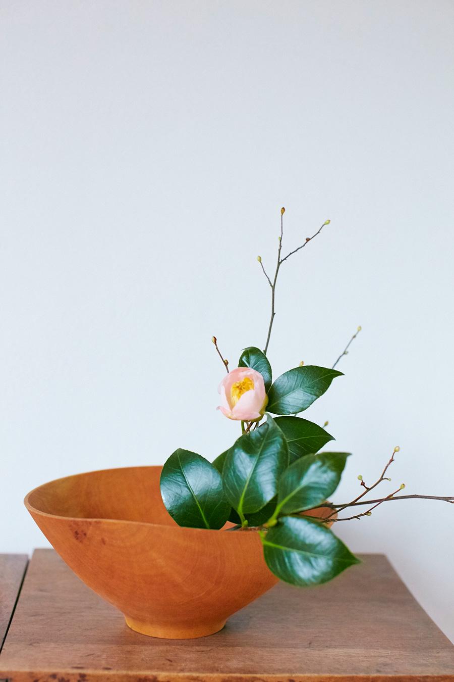 春に咲く花の冬芽を楽しむ。「冬芽のついたヒュウガミズキと椿を一緒に飾りました。主役にしたい花と枝物をシンプルに合わせます」