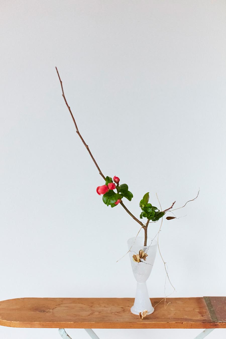 脚付きのグラスは特別なものに見える。白いガラスには、凛とした冬の空気も感じられる。花材はボケ。冬の風景の中にも、春が近づいてくる足音が聞こえるようだ。ボケの伸びやかな枝も美しい。枯れた山芋の種を枝にかけて遊ばせる。「下に垂れる動きがあるとおもしろいです」。身近な自然の風景がそのまま場所を移したかのようだ。