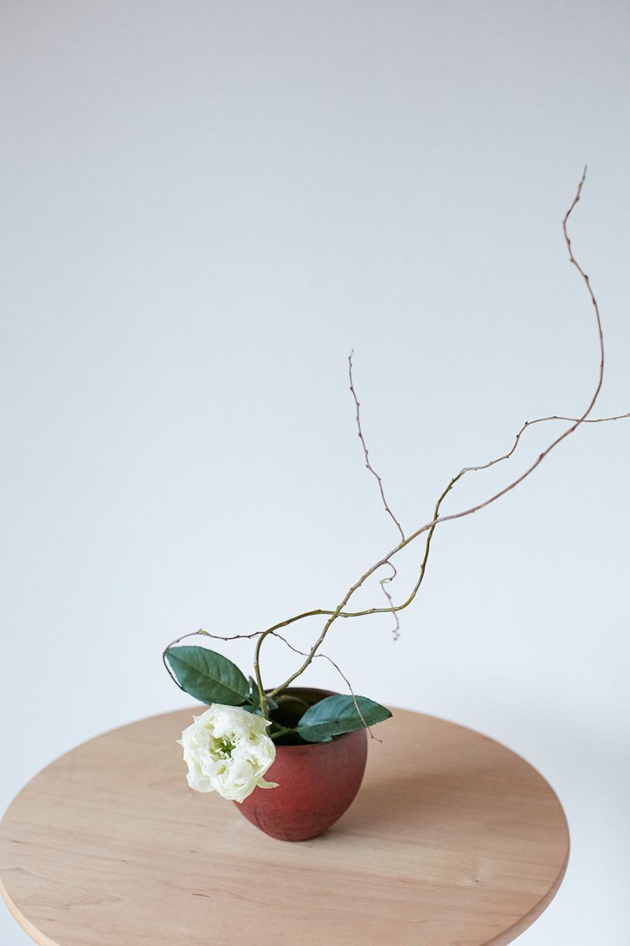 一輪の白いバラを、枝の動きが際立つウンリュウヤナギとともに、赤いお椀に飾った。