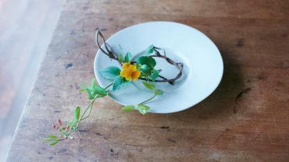 日常の器に生ける  身近な草花を 普段使いの器に合わせる