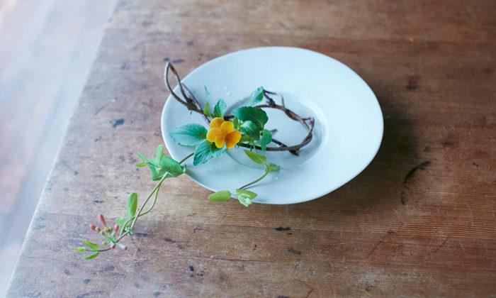 日常の器に生ける身近な草花を普段使いの器に合わせる