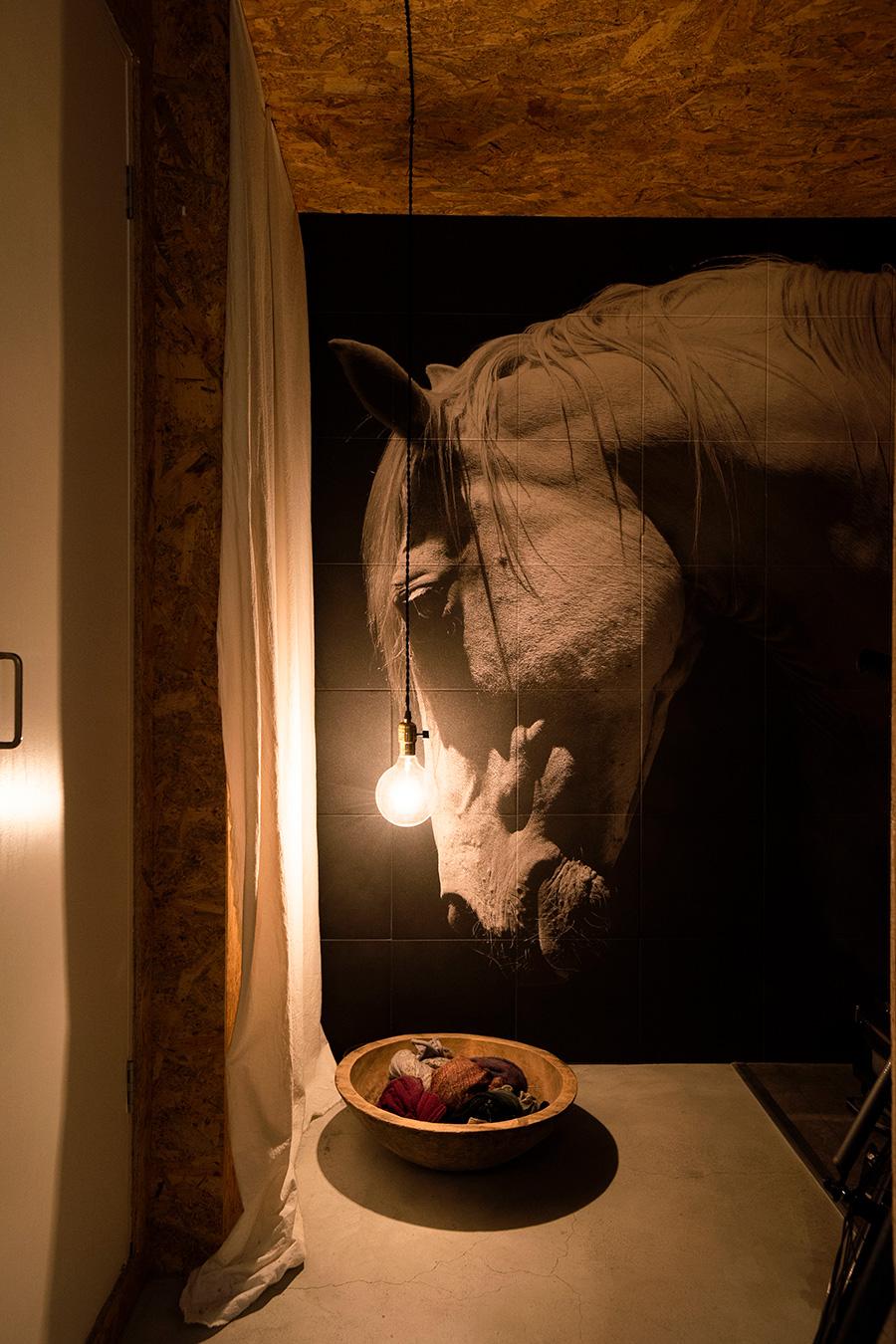 玄関の壁に施されたオンデマンドエコカラット。ライトは低い位置に設定し、光が欲しいところだけに照射。