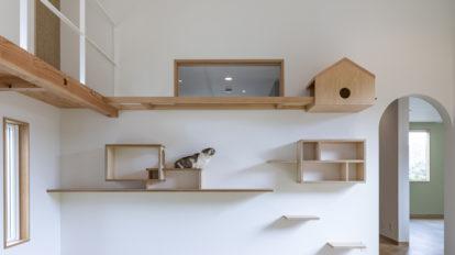 猫好き建築家が提案  人もペットも幸せになる 猫と暮らすアイデア