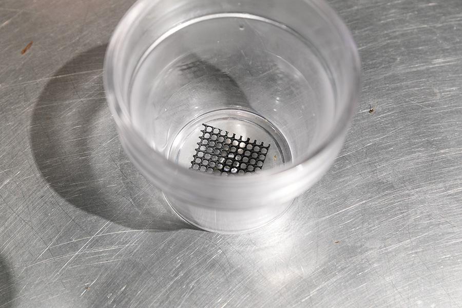 鉢穴にネットを敷く。「今回は見た目の楽しさ重視でガラスの鉢を選びました。素焼きの鉢のほうが空気の通りが良く乾きが早いので育てやすいかもしれません」