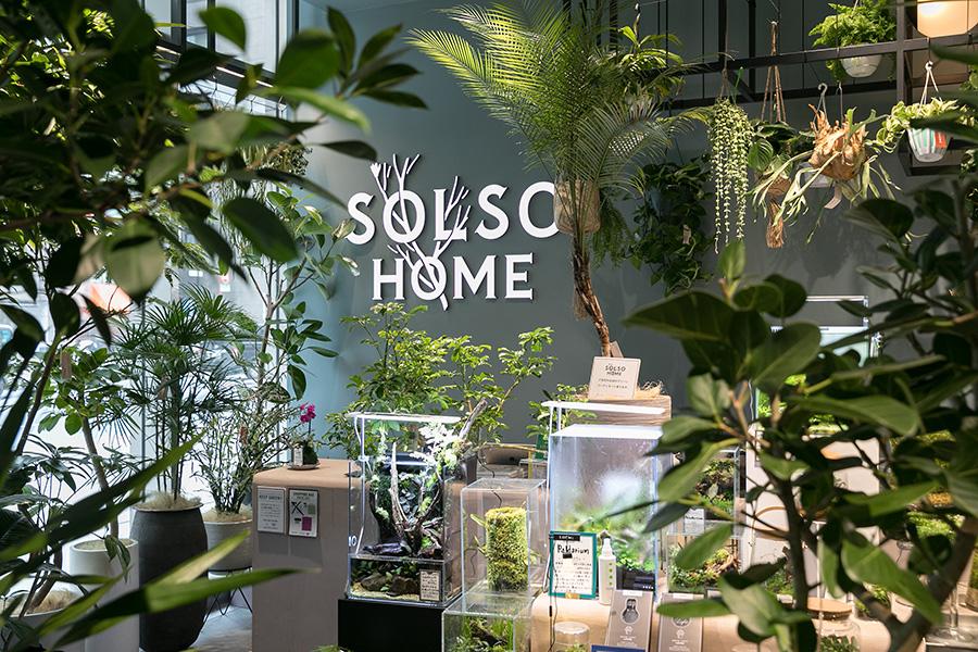 『SOLSO HOME Nihombashi』は2018年にオープンした日本橋高島屋S.C.の1階にある。ガラスケースでグリーンを楽しむパルダリウムの紹介コーナーも充実している。