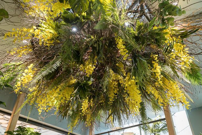 『SOLSO HOME nihonbashi』のエントランスの天井近くの巨大な装飾に注目。季節感溢れる趣向が凝らされている。こんなに大きいものは難しいけど、このセンスを家でも真似してみたい! ちなみに、黄色の花はオンシジウム。
