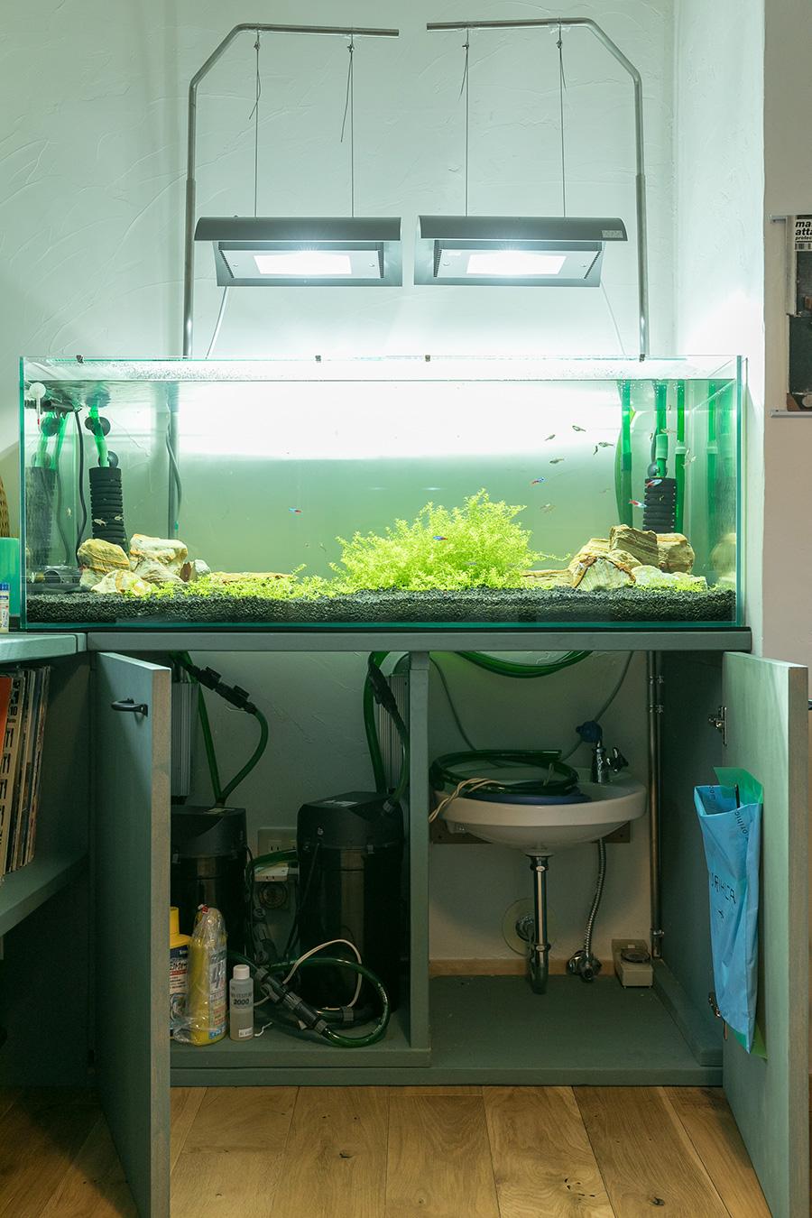 水槽の下に水道を設置したことで水換えやメンテナンスが楽にできる。