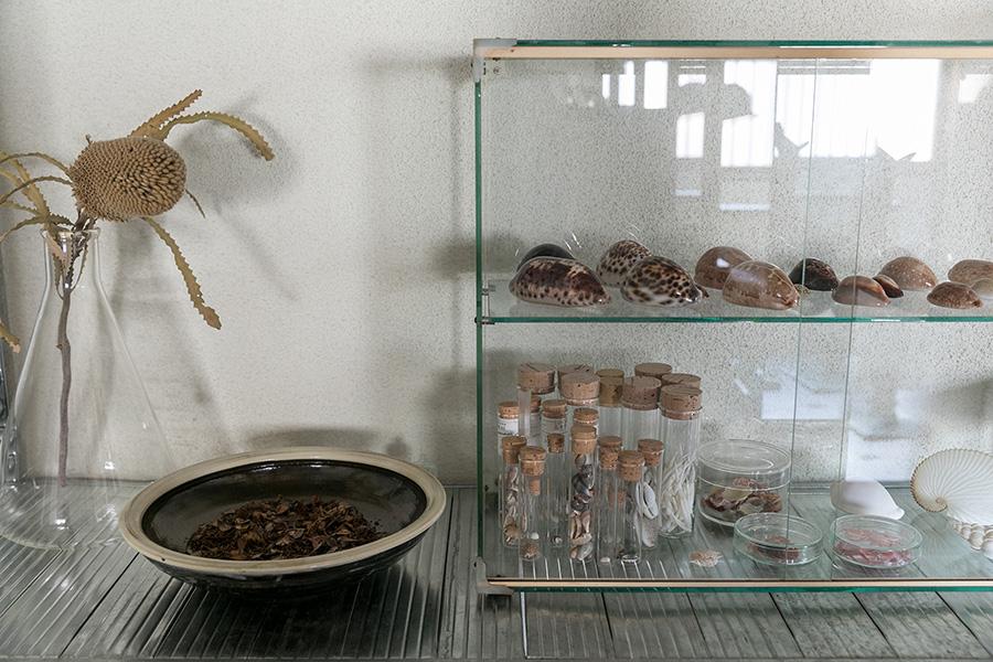 蒐集しているものを分類する容器は小泉硝子製作所や、実験器具を売る「リカシツ」などで購入しているという。