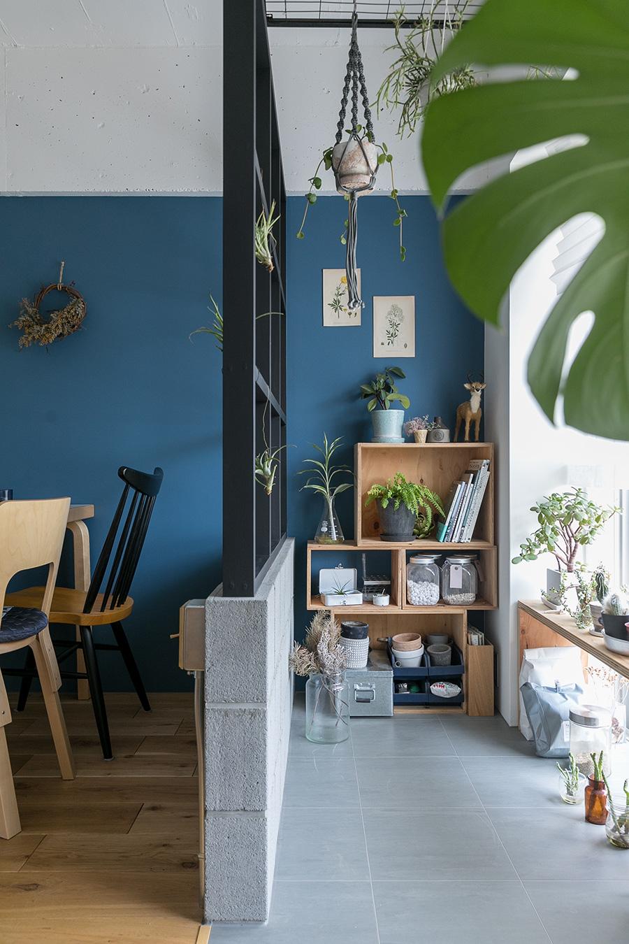 明るいサンルームで育つ植物たち。仕切りの壁は下がコンクリートブロック、上は木で造作している。