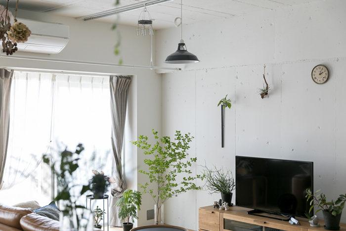壁面も使ってグリーンを楽しんでいる。白い空間にガラスの花瓶に活けたドウダンツツジの葉が揺れる。