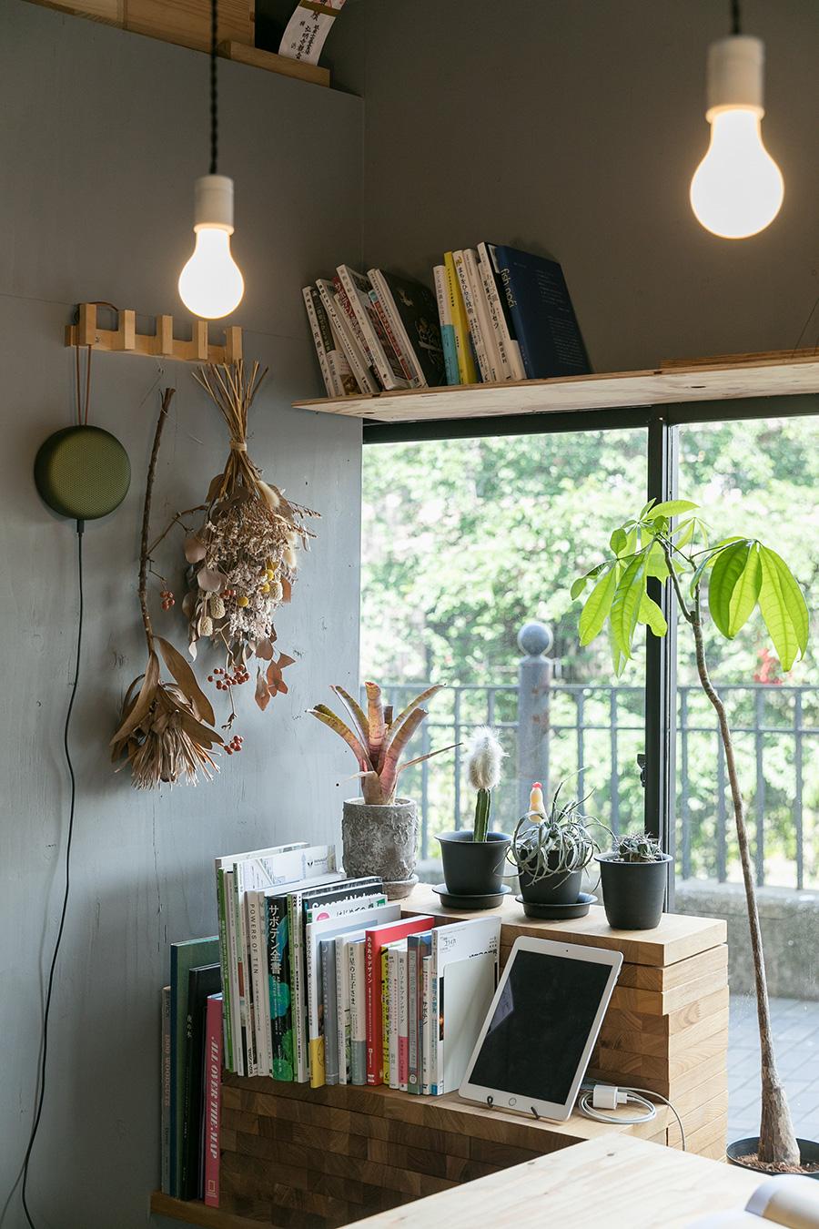 窓の外に大岡川の緑が広がる。桜の時期は川沿いの道がとても賑わうのだとか。窓の上にも本棚を設置。
