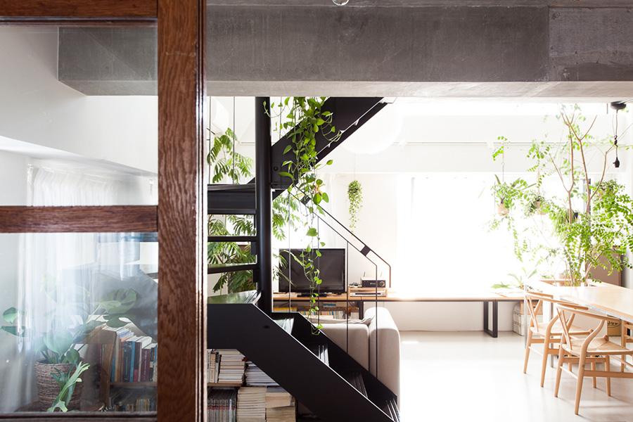 個室に設けた木枠の窓からLDKを眺める。光とグリーンが目にまばゆい。