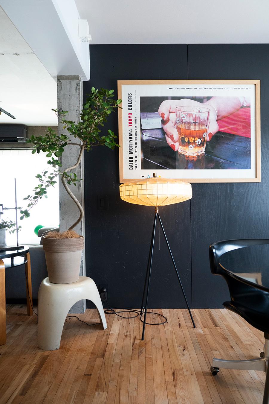 柳宗裡のエレファントスツールを鉢植えの台座に。フロアスタンドはドイツかイタリアのもの。