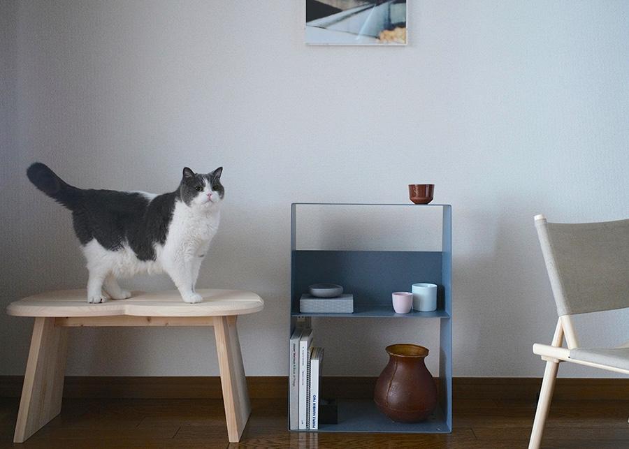 マットな塗装仕上げなので、木製家具など落ち着きのある空間にも似合う。 Takeshi W50 D26 H69.6cm  各¥48,000 Takeshi (キャスター付き) 各¥51,000 Takeshi テーブルトップ ¥19,000〜 以上Takeshi ( フィール )