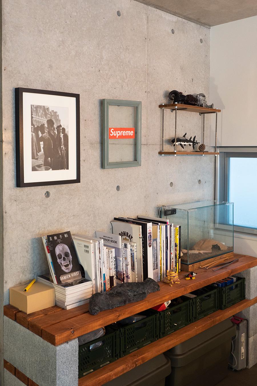 Pコン穴を使って壁をディスプレイ。上段にはペットのトカゲが。