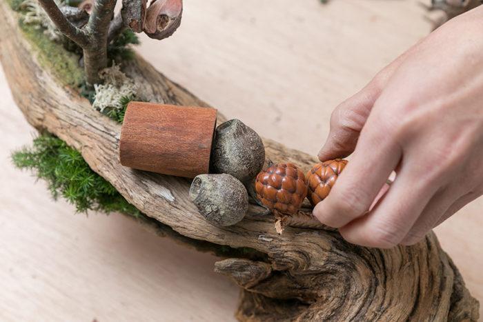 木の切り株のように見えるのはシナモン。手にしているのがラフィアの実。その間のコロンと丸い実がユーカリ。「ユーカリの木の実は様々な形や大きさがあって、実にバリエーションが豊かです」