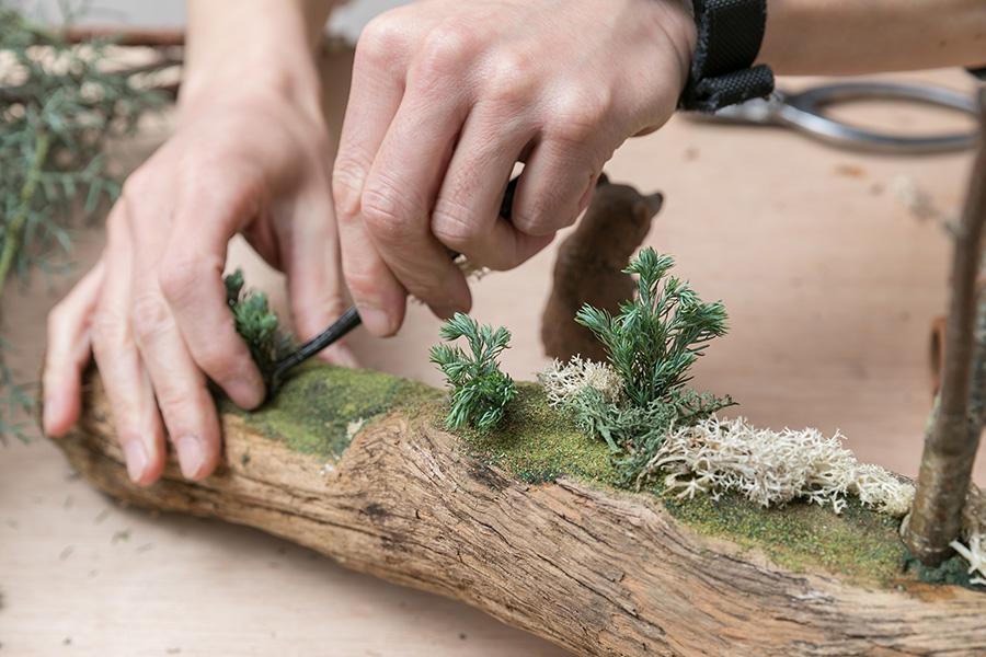 ボリューム感のあるコニファー、ブルーバードを低木に見立ててオアシスに挿す。