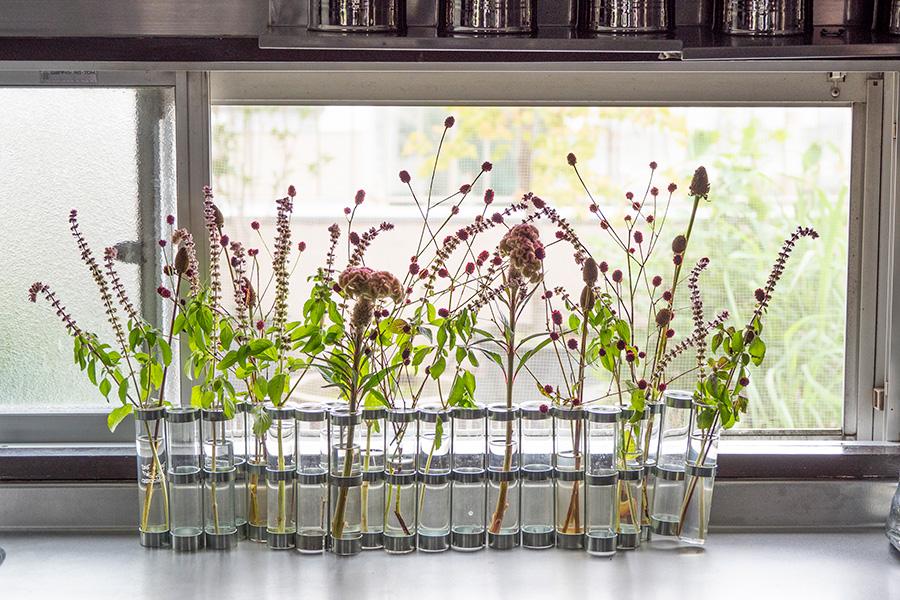 キッチンにも窓があり風が通り抜ける。Tsé&Tsé associéesの「四月の花器」に、季節の花をアレンジ。生け花の感覚で楽しんでいるそう。