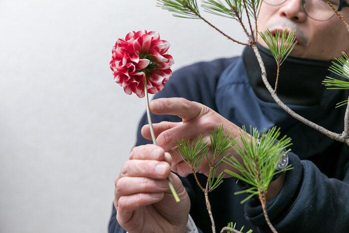 花には生き生きと見える角度がある。このダリアも花の茎をよく見ると、表裏で茎の色合いが違って若干の傾きが感じられる。「もともと咲いていた角度を意識すると、花が持つエネルギーを感じられるいけばなになります」