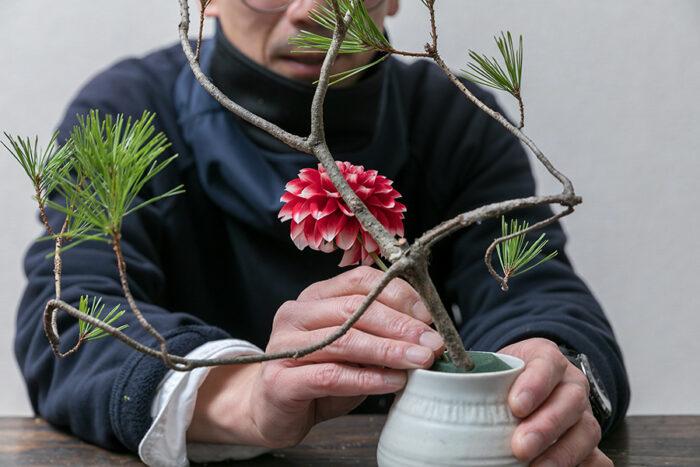 向きを確認したダリアは花が松を仰ぎ見るようにオアシスにさすと両者の関係性がうまれる。