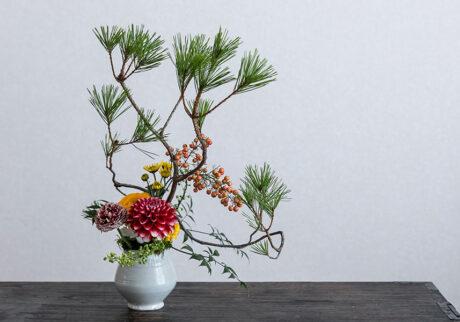 卓上松飾りで迎えるお正月松を生き生きといけ、新しい年を迎える