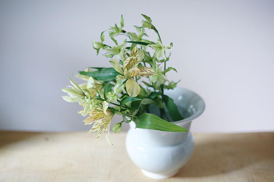 """Farm to Vase""、農園から花瓶まで。『LIFFT 定期便』は、信頼できる花を、最短時間で花瓶まで届ける。"