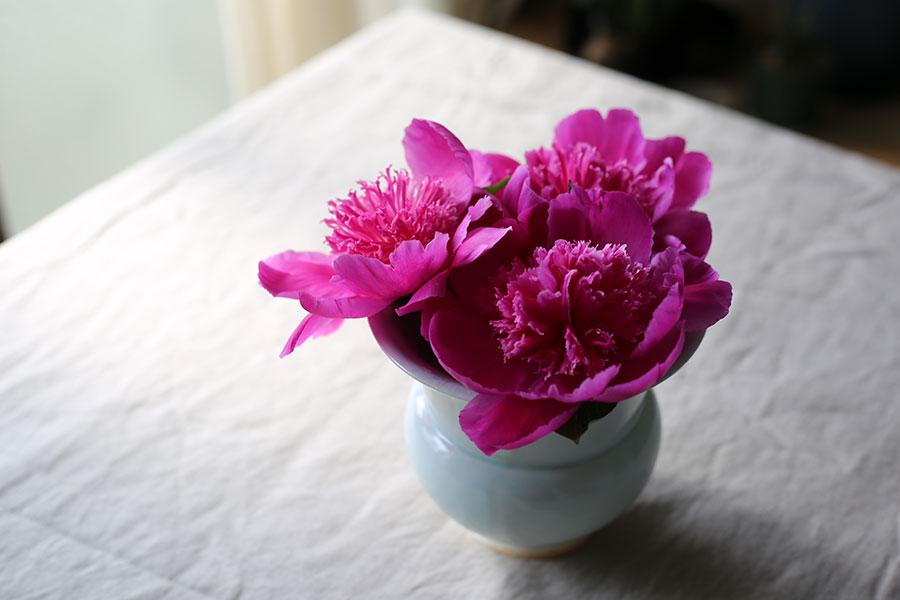 テープの中央の升目にお花をいけると、キュッとまとまってかわいく飾ることができる。
