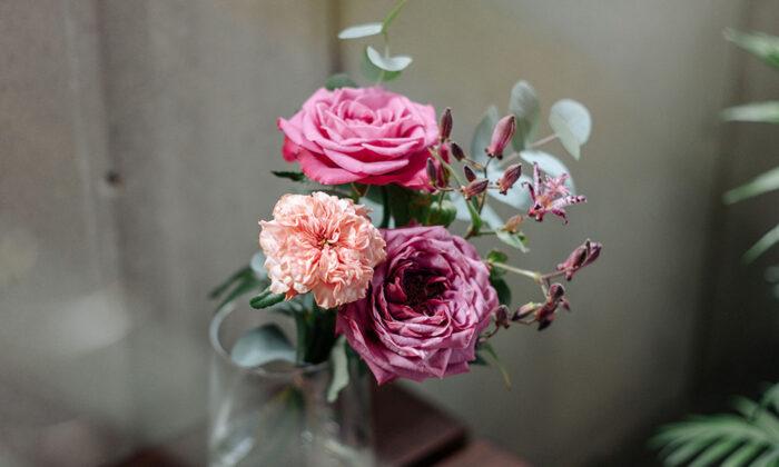 お花をサブスクで農場から最短で花瓶へ。 生き生きと輝く花を楽しむ
