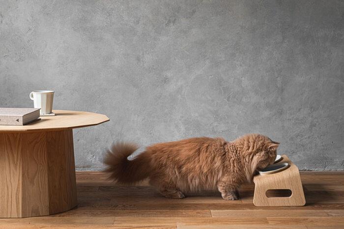 獣医師監修のもと、15度の傾斜と高さに設定。楽な姿勢でご飯を食べたり、水を飲むことができる。