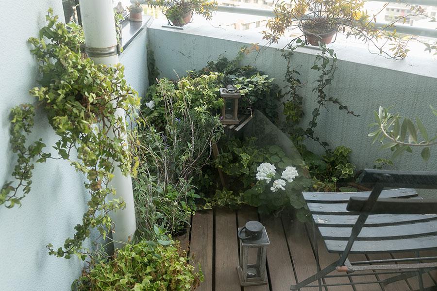 ダイニングテーブルに飾る小さなテーブルフラワーは、バルコニーで育てた花を摘む。