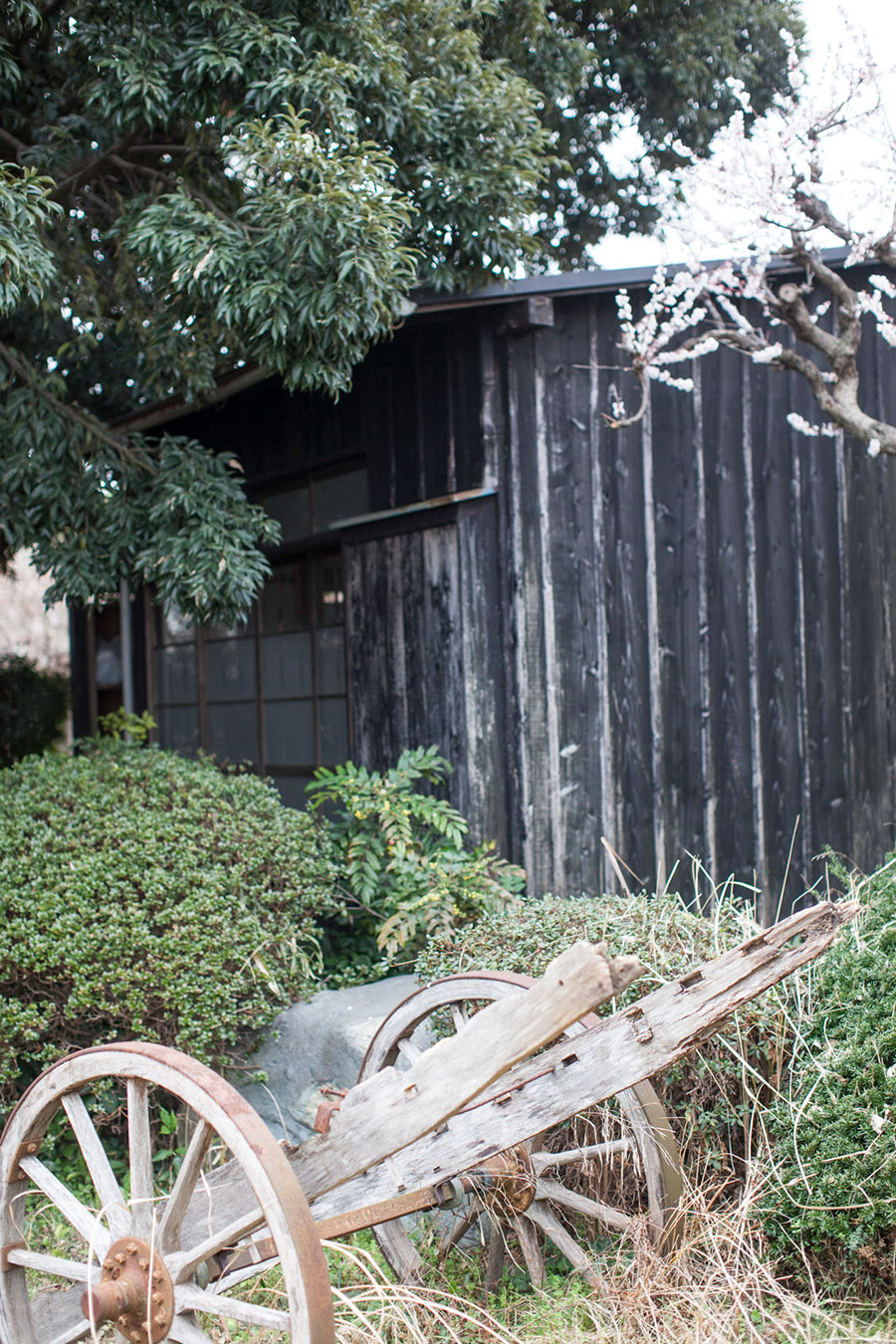 囲炉裏のある部屋の板塀を黒く塗装した。手前は牛の荷車の一部。