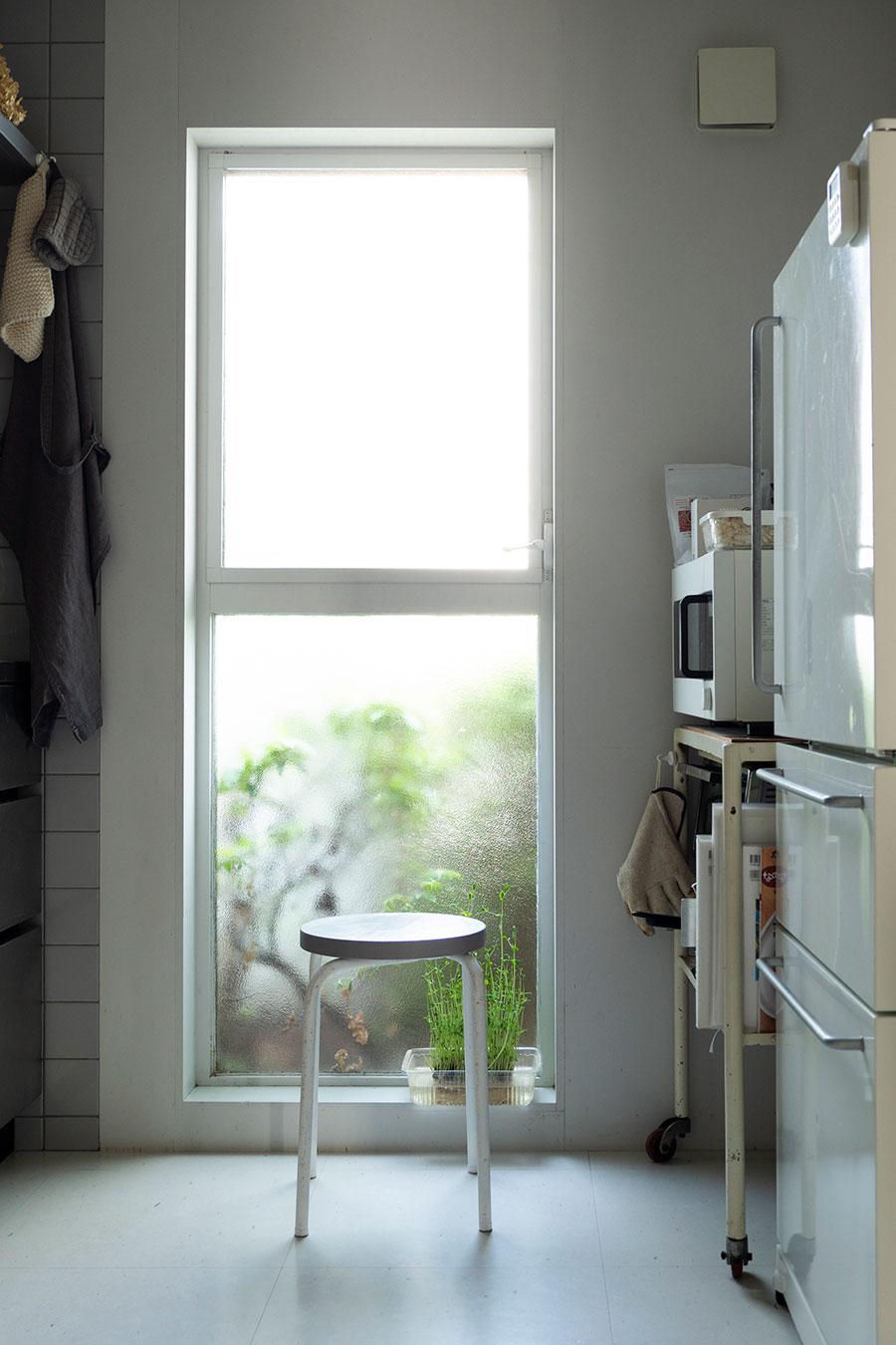 キッチンにも開口があり、外から穏やかな光が差し込む。