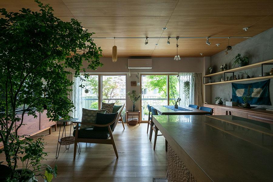 バルコニーのグリーンが美しい。左右で違う種類のモミジを植え、葉の色の変化を楽しむ。天井は突板仕上げ。窓にインナーサッシを追加した。「暖かさが全然違います」