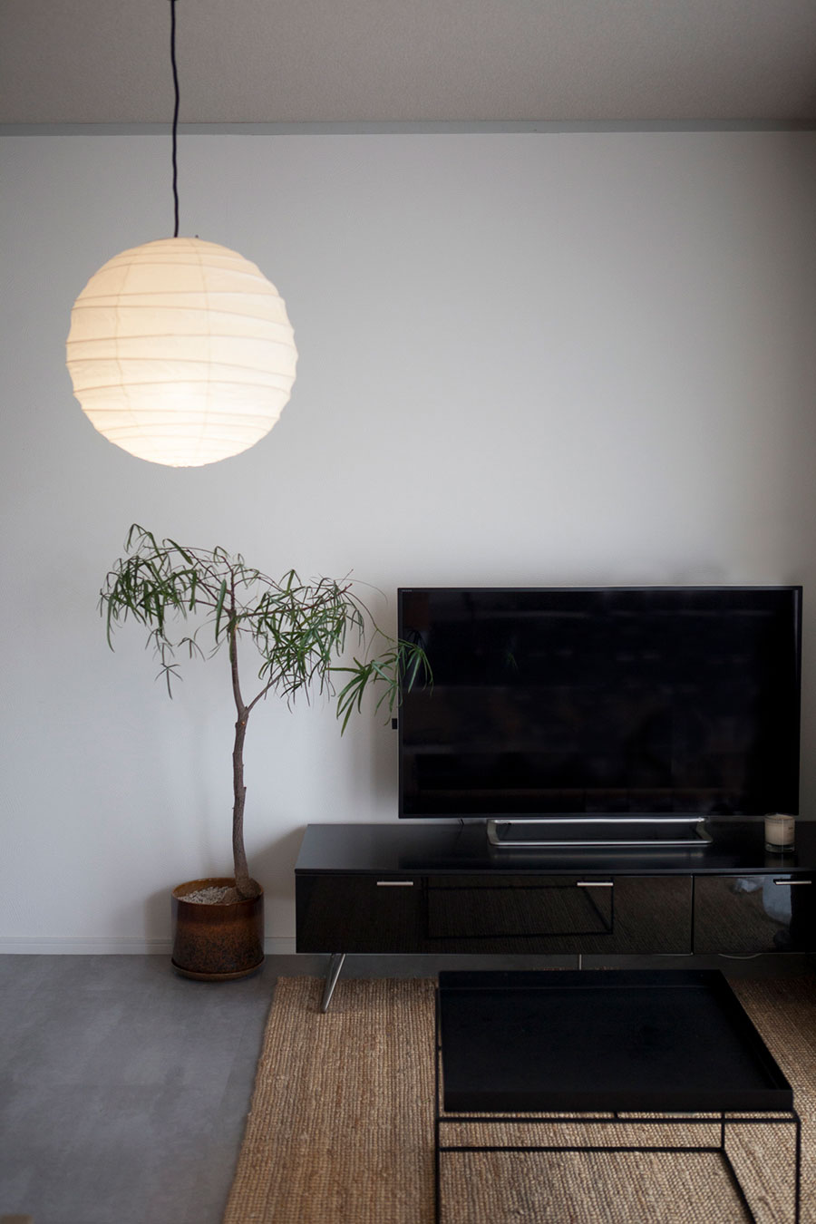 シャープでモダンなデンマーク家具に、照明にはイサム・ノグチを合わせて。観葉植物はボトルツリー。