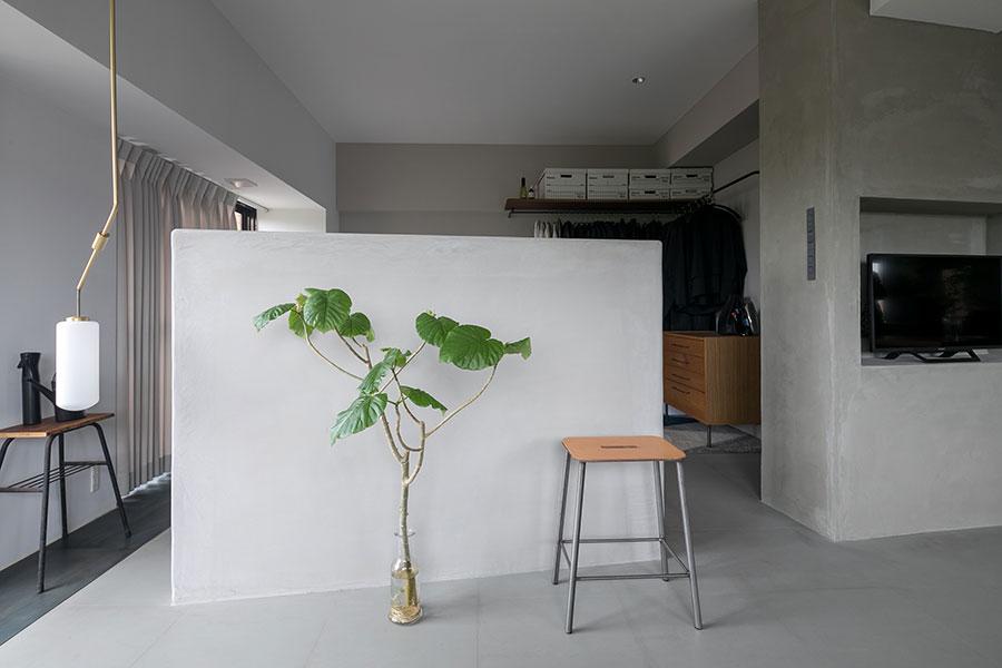 リビングと寝室を分ける壁にウンベラータの水耕栽培が映える。