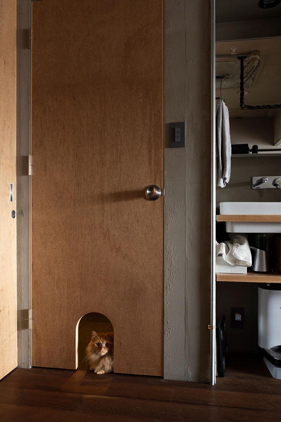 ラワンの建具が優しい雰囲気。猫の出入り窓はアーチ型に。