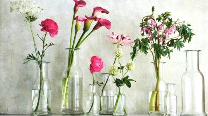 丈夫で手頃、水差しや花器にも使える ガラスのジャグ&カラフェ