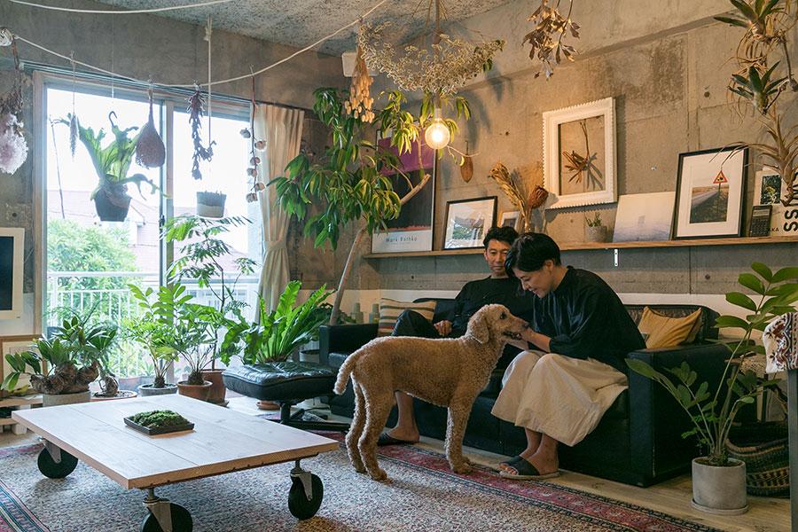 たっぷりのグリーンとお気に入りのアートに囲まれたくつろぎスペース。「家に帰ったらこのソファにゴロっと横になります。その時、床から72cmの高さまで白に塗った壁に埋もれるとリセットされた感じがして心地よいです」。キャスターつきのコーヒーテーブルはDIYだ。