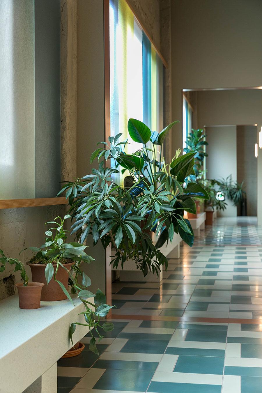 廊下はホテル内のバルコニーという位置づけ。CKRオリジナルデザインのベンチの上に植物を飾る。上に伸びる植物、倒れるように葉を茂らせるもの、葉の大きさや色のバランスを見ながら配置を決めていく。
