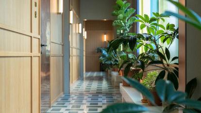 たっぷりの緑で満たすアイディア 植物の力で空間のイメージを 造る方法を学ぶ